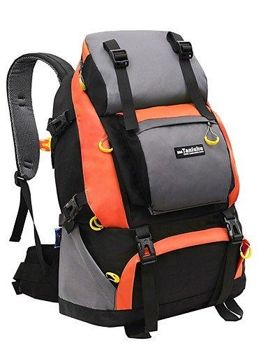 ZQ 40L L Rucksack Camping & Wandern / Reisen Draußen Wasserdicht andere Nylon N/A Black