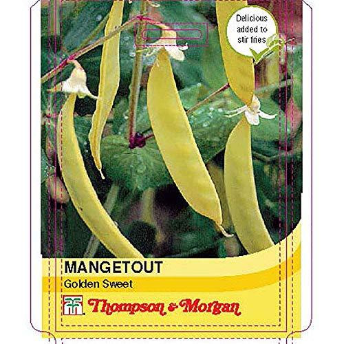 Thompson et Morgan - Légumes - Mangetout Sweet Doré - 100 graines