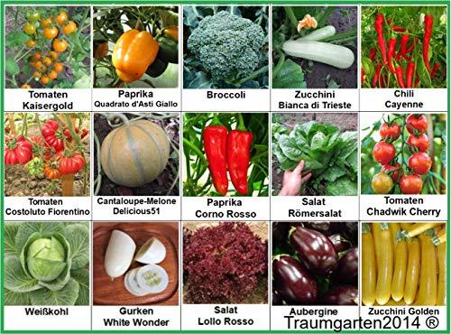 Gemüse Set 2: Broccoli Gurken Zucchini Weißkohl Aubergine Salat Tomate Chili Paprika Melone Samen Saatgut