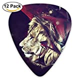 Silent Lion Guitar Picks 12/Pack Set Paddles Plectrums For Guitarist Players