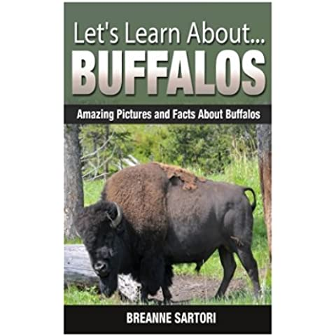 Buffalos: Amazing Pictures and Facts About Buffalos