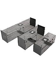 Leopet – Trampa de jaula de hierro para animales pequeños (captura para animales) – ideal para ratas, ratones, zorros, conejos – tamaño S (aprox. 79,5/28/26 cm)