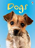 Dogs (Usborne Beginners)