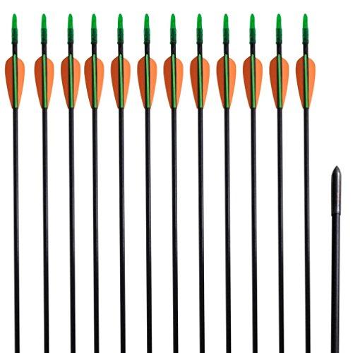 """vidaXL 12 flèches standard en fibre de verre 30"""" 0,6 cm pour arc classique"""