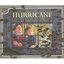 By David Wiesner Hurricane (Reprint)