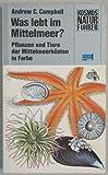 Was lebt im Mittelmeer? Pflanzen und Tiere der Mittelmeerküsten in Farbe - Andrew C. Campbell