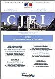 L'émission de dette souveraine (CJFI n.64 avril-mai-juin 2011)...