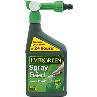 EverGreen 100sqm Spray/Feed Lawn Food