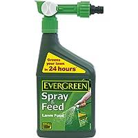 EverGreen Spray and Feed Lawn Food Spray, 1 L