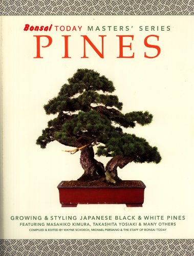 Bonsai Today Masters' Series: Pines, Growing & Styling Japanese Black & White Pines featuring Masahiko Kimura, Takashita Yosiaki & Many Others (Pine Black Bonsai Japanese)