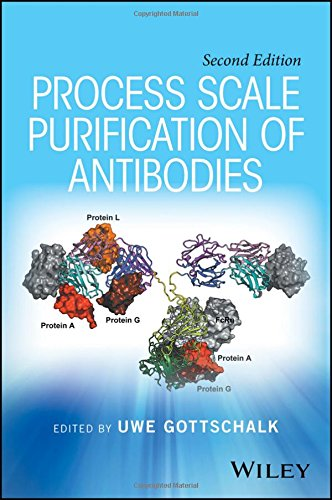 PROCESS SCALE PURIFICATION OF