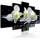 decomonkey Bilder Blumen Orchidee 200x100 cm XXL 5 Teilig Leinwandbilder Bild auf Leinwand Vlies Wandbild Kunstdruck Wanddeko Wand Wohnzimmer Wanddekoration Deko Wasser schwarz weiß grün