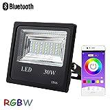 Autai LED Flutlicht 30 Watt, Wasserdicht, RGB Multicolor Farbwechsel und Dimmbar, steuerbar über Smart Bluetooth App, ideal für Hof, Garten, Rasen, Baumbeleuchtung oder zur Weihnachtsbeleuchtung
