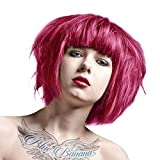 La Riche Directions Semi-Permanent Hair Colour 88ml x 2 tubs Carnation Pink
