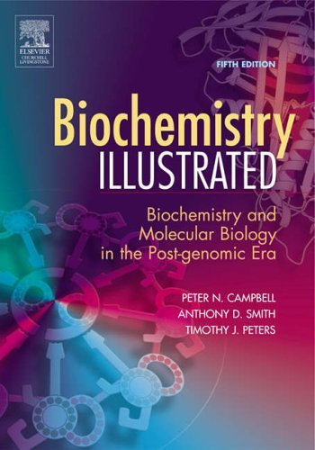 Biochemistry Illustrated: Biochemistry and Molecular Biology in the Post-Genomic Era, 5e by Peter N. Campbell (2005-04-20)