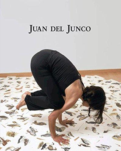 Descargar Libro Catálogo de Juan del Junco (Ojo Que Ves (la Fabrica)) de Juan José del Junco González