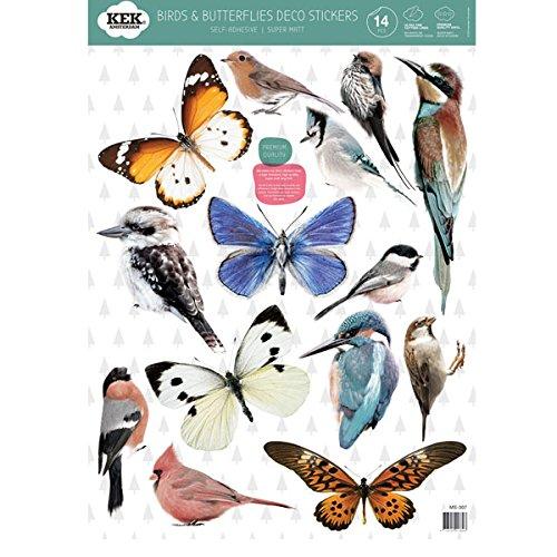 KEK Amsterdam - Wandtattoo - Wandsticker - Schmetterlinge / Vögel - 42 x 59 cm Wandtattoos Vögel Und Schmetterlinge