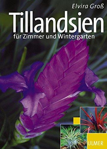 Tillandsien für Zimmer und Wintergarten (Garten-Ratgeber)