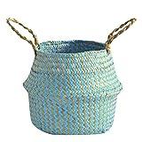Outdoor Home Sansee, Vaso da Fiori in Vimini di alghe Marine, Cestino in Vimini Decorativo, Decorazione per la casa