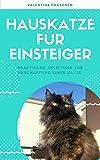 Hauskatze für Einsteiger: Praktische Anleitung zur Anschaffung einer Katze