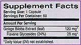 Natrol Ginkgo Biloba 120 mg Caps (60) Standard, 30 g