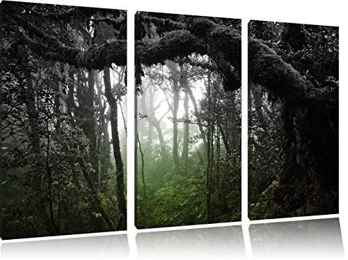 Pracht Gerahmt (Regenwald in seiner ganzen Pracht schwarz/weiß 3-Teiler Leinwandbild 120x80 Bild auf Leinwand, XXL riesige Bilder fertig gerahmt mit Keilrahmen, Kunstdruck auf Wandbild mit Rahmen, günstiger als Gemälde oder Ölbild, kein Poster oder Plakat)