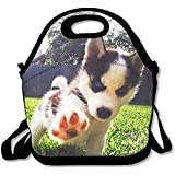 Lunchtasche mit süßem Hundemotiv, groß, dick, aus Neopren, isoliert, warm, mit Schultergurt, für Damen, Teenager, Mädchen, Kinder, Erwachsene