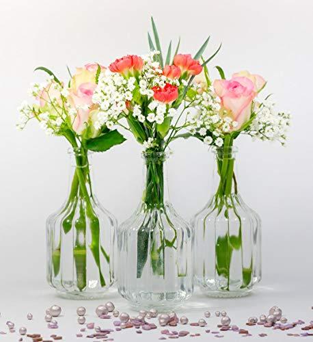 casa-vetro 6 oder 12 x kleine Vasen Glasflaschen HALSI Glasfläschchen Landhaus Vintage Vase Flasche Glas klar Mini Dekoflaschen (12 x)