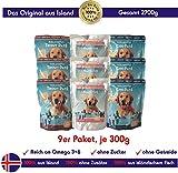 Icelandpet Nassfutter für Hunde aus 100% isländischem Fisch | Getreidefrei, Zuckerfrei | Paket mit 3 Sorten: Forelle, Lachs, Dorsch, 9x300g