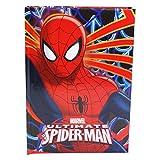 DC Comics Spiderman Agenda Standard Agenda Scolaire 10 Mois Bleu