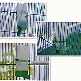 Reefa Abreuvoir/Distributeur de L'eau Pour Oiseaux-4 Pièces pour Volière Perroquets Perruche Calopsitte