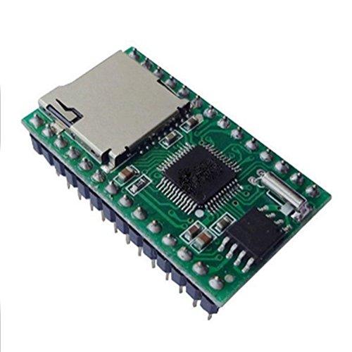 Serielle Flash - (Demarkt WT5001M02-28P Modul MP3-Modul Serielle Sprachmodul Hochwertige Module)