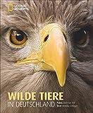 Wilde Tiere in Deutschland - Monika Rößiger