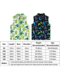 LJYH Baby Boys Girls Demin Vest with Flower Embroidery Toddler Kids Sleeveless Demin Jacket Outwear 1-5 Years