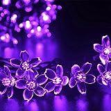 InnooTech 50er LED Solar Lichterkette Blumen Garten Außen Lila 5 Meter, Solar Blüten Beleuchtung für Party, Weihnachten, Outdoor, Fest Deko usw.