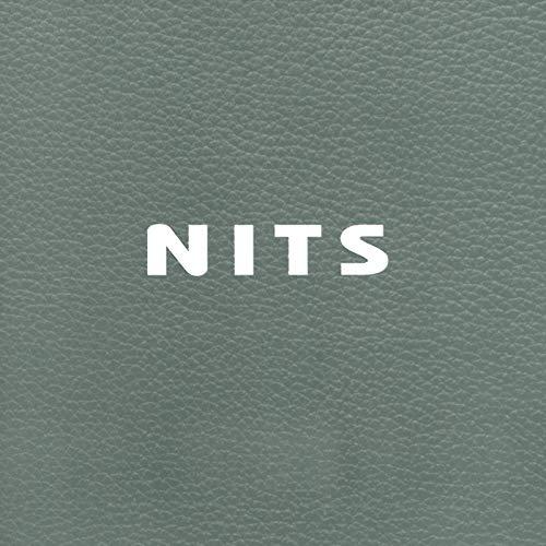 The Bauhaus Chair (Album Version)