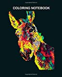 Coloring Book: jackass mule donkey colored design for animal lovers owners true friend 64 pages - 8 x 10 inches