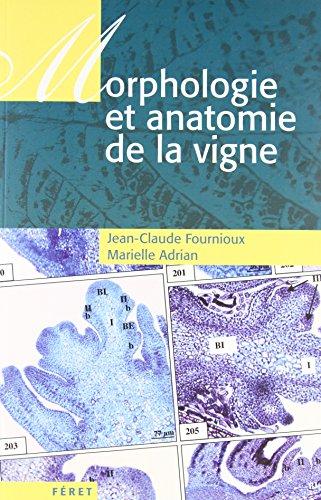 Morphologie et anatomie de la vigne par Jean-Claude Fournioux