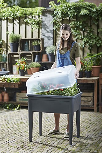 Preiswert Elho 6927307736000 Green Basics Anzucht Tisch Super Xxl