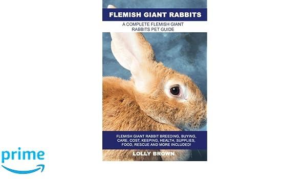 Flemish Giant Rabbits Flemish Giant Rabbit Breeding Buying