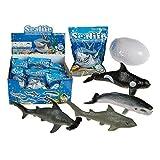 4 x Schlüpfendes Ei Fische Sea Life Figuren Tiere Sprudelnd Kinder