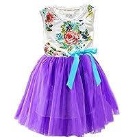 ZHUANNIAN Baby Girls Sleeveless Flower Tulle Dresses (3-4Y, Purple)