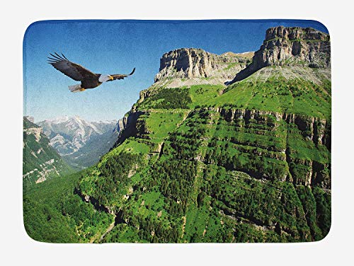 tgyew Eagle Bath Mat, Wild Majestic Bird Flying Great Landscapes Green Mountains Forest Nature Image, Plush Bathroom Decor Mat with Non Slip Backing, 23.6 W X 15.7 W Inches, Green Blue Black (Black Mountain Lab The)