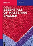 Essentials of Mastering English: A Concise Grammar (Mouton Textbook)