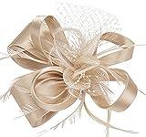 Fascigirl Fascinator Haar Clip Haar Accessoire Tea Party Hochzeitskirche Kopfbedeckung für Frauen (Fascinator 19)