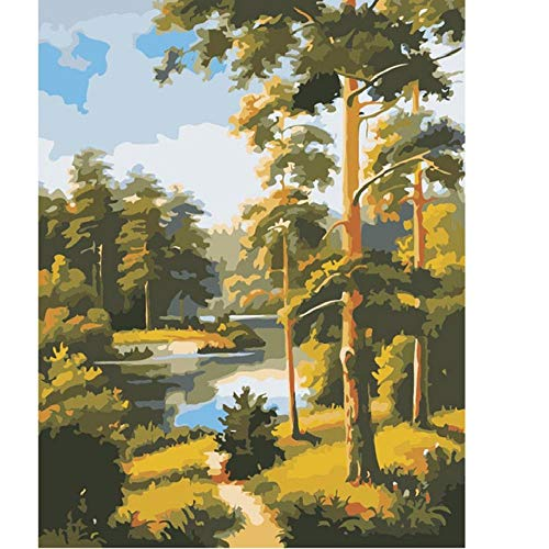 Wzzpsd dipingere con numeri pittura alberi di fiume del paesaggio di bellezza su arte del mestiere di coloritura fai da te unico regalo moderno stile arredamento per la casa