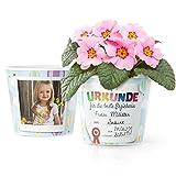 Urkunde Abschied Blumentopf (ø16cm) | Kindergraten Geschenk für die beste Erzieherin mit Rahmen für zwei Fotos (10x15cm)