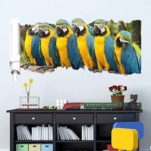 Netspower Wand Aufkleber Karikatur Tier Reihen Wand Zitat Kunst Aufkleber Abziehbild Für Hauptschlafzimmer Dekorkorp Büro Wand Sprichwort Wandtapete-Sechs Papageien