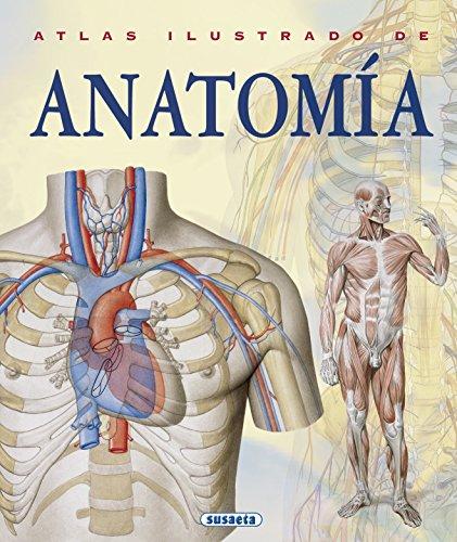 Atlas Ilustrado De Anatomia por ADRIANA BIGUTTI