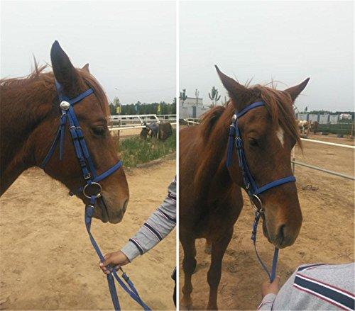 Horseware Rambo Micklem Multibridle &Black &Blue& Red (Blue)